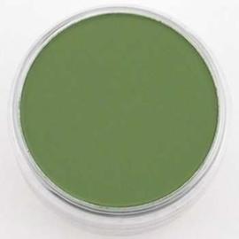 PanPastel Chrom.Oxide Green Sh