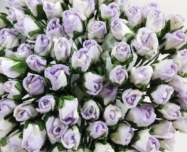 Tiny Rose Buds - Purple Variegated