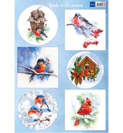 Marianne D Knipvel VK9572 - Birds in the snow