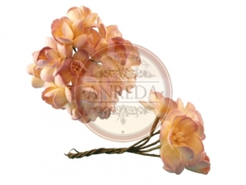 Cherry blossom flowers -  Classic Lilac Cream Variegated