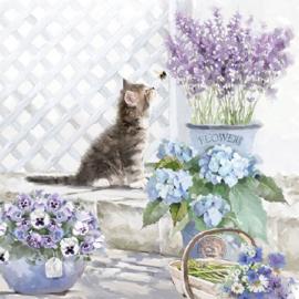 Servetten Kitten (20 stuks)