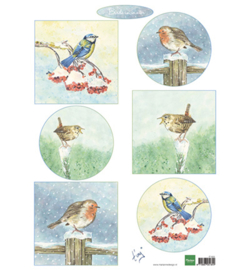 Marianne D Knipvel IT605 - Tiny's birds in winter
