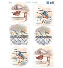 Marianne D Knipvel - MB0197 - Mattie's mooiste Birds in winter