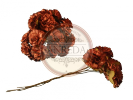 Carnation - Brown