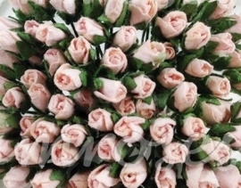 Tiny Rose Buds - Soft Pink