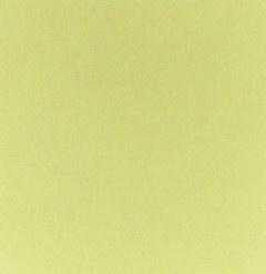 Papicolor - 230970 - Zachtgroen - 200 gram