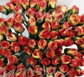 Tiny Rose Buds - Red Yellow Variegated