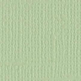"""Bazzill canvas 12x12"""" aloe vera"""