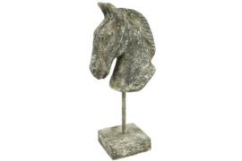 Paardenhoofd Setaro grijs
