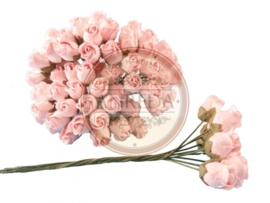 Middle Semi Open Rose Buds - Soft Pink