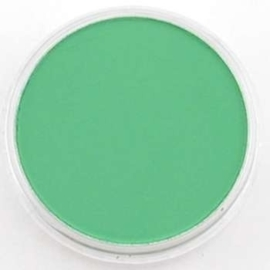 PanPastel Permanent Green