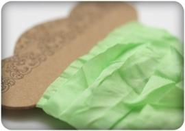 ScrapBerry's Shabby Ribbon Fresh Green 10 mm 1 m (SCB510112)