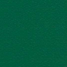 Papicolor - 230950 - Dennengroen - 105 gram