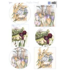 Marianne D Knipvel MB0174 - Mattie's mooiste: Spring flowers