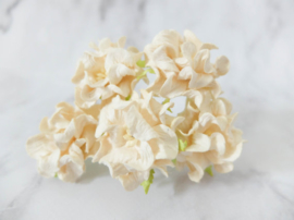Curly Flowers Double - Cream