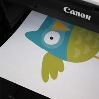 Printbare Vinyl A4 (Mat) formaat (inkjetprinter)