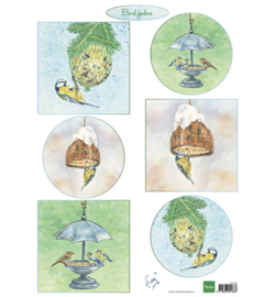 Marianne D Knipvel IT604 - Tiny's birds feeding