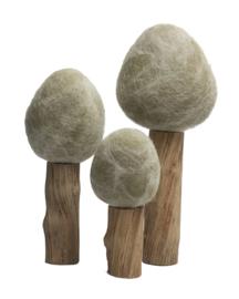 Drie Winterbomen, Papoose