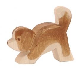 Sint Bernard pup, Ostheimer