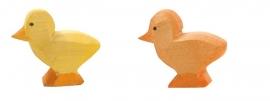 Kuiken geel of donker Ostheimer