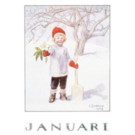 Maand Januari, Elsa Beskow