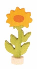 Calendula steker, Grimm's
