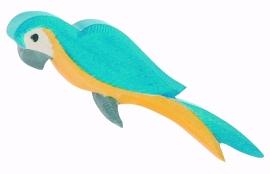 Papegaai blauw, Ostheimer