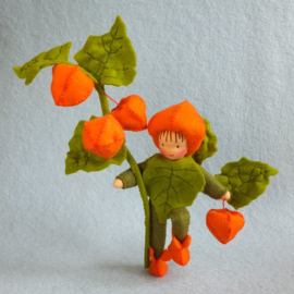 Lampionplantje, atelier Pippilotta