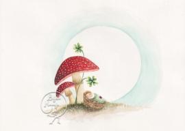 Mushroom Baby, Bijdehansje