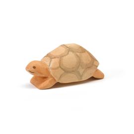 Schildpad, Ostheimer