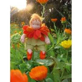 Bloemenkindjes: Goudsbloem, atelier de Witte Engel