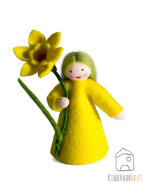 Narcis Viltpopje *1