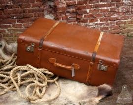 Grote geleefde koffer (131002)