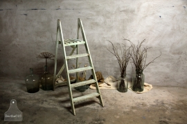 Geleefde ladder (132391)