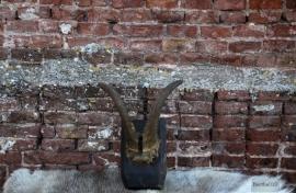 Bokkenhoorn (131115) verkocht