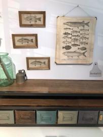 Schilderij vissen (138044)