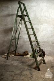 Oude hoge geleefde ladder (132390)..verkocht