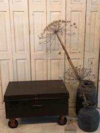Kist ijzer oud (141882) verkocht