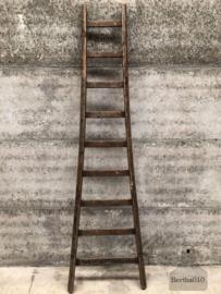 Krukjes, trapjes en ladders