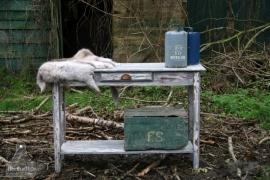 Oude side table (130115) verkocht