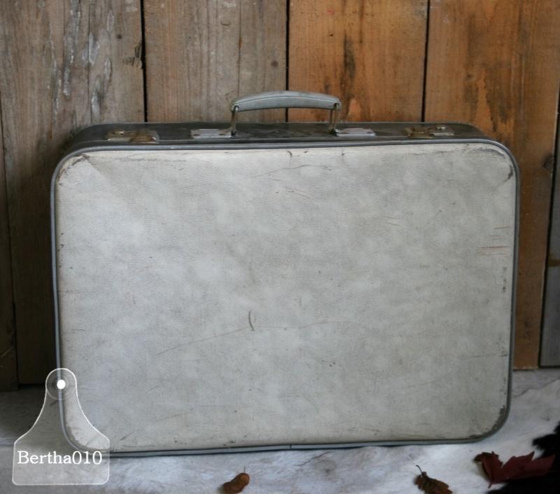 Jaren 50 koffer (130028)