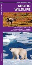 Natuurgids Arctic Wildlife | Waterford Press | ISBN 9781583558294
