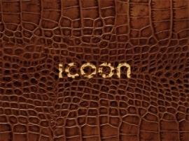 Woordenboek - Aanwijsgids ICOON | Amberpress | ISBN 9783980965545