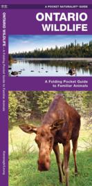 Natuurgids Ontario Wildlife | Waterford Press | ISBN 9781583552834