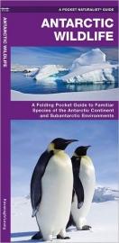 Natuurgids Antarctic Wildlife | Waterford Press | ISBN 9781583557884