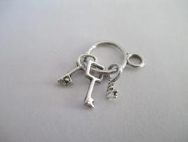 Sleutelbos zilverkleurig