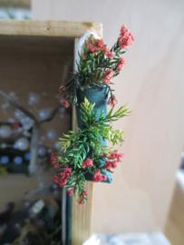 Workshop plantenzak