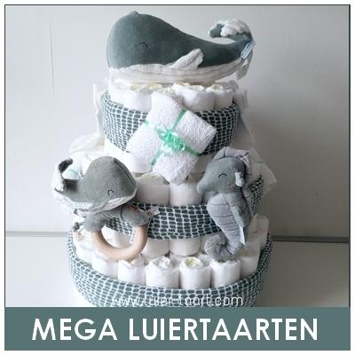 Luiertaart Kraamcadeau Babyshower collega zwanger