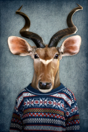 Antelope with pullover