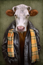 Cattle with leather jacket
